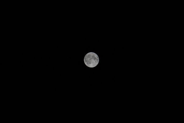 なんとなく上手く撮れたお月様