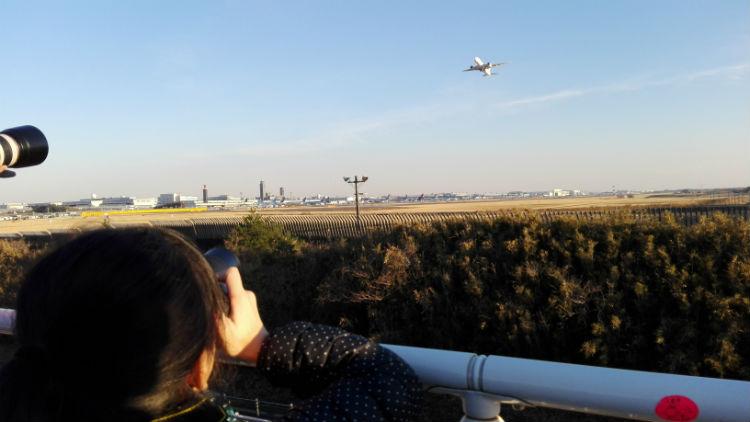 小4女子と飛行機