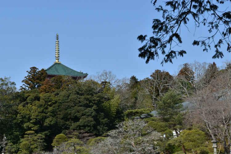 明るく気持ち良い成田山公園内