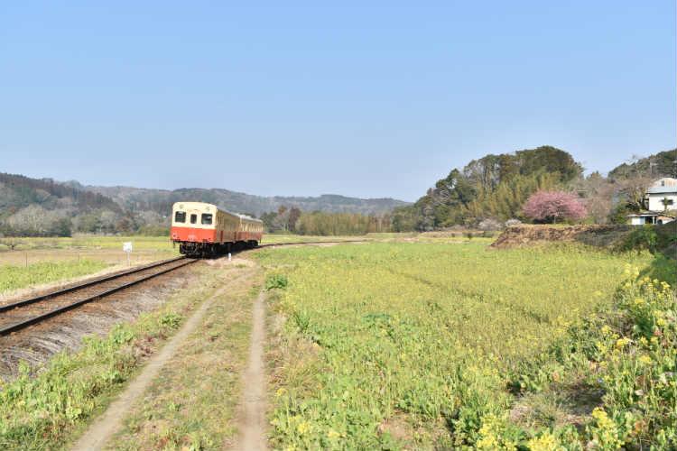 のどかな風景に小湊鉄道
