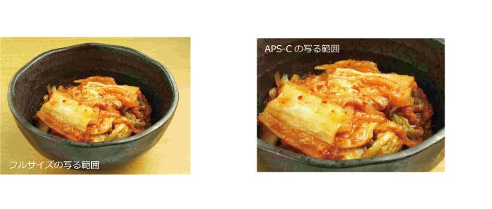 フルサイズとAPS-Cの写真の違い