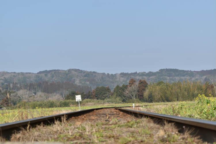 小湊鉄道菜の花方面の線路