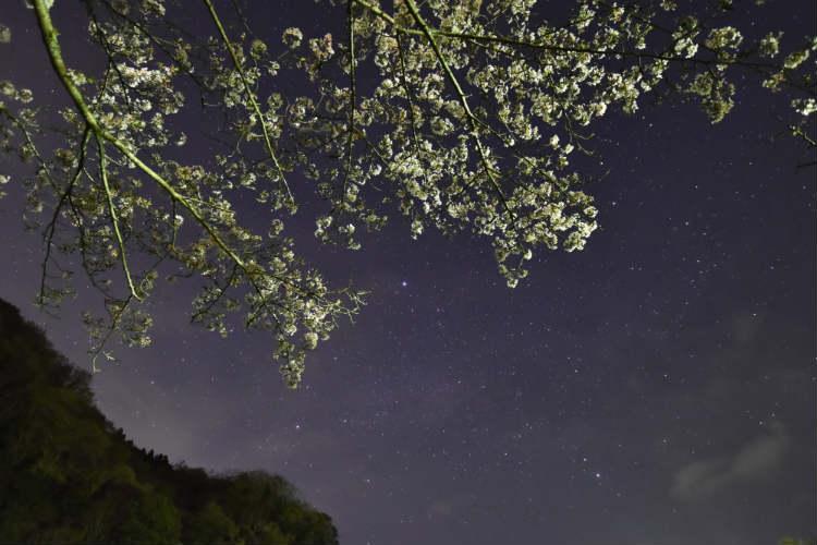 次はISO1600にして天の川だろう星を撮影してみた