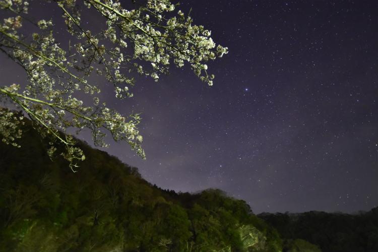 わずかに構図を変えてまた天の川だろう星を撮影する