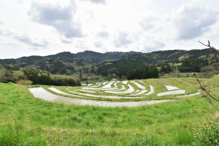 大山千枚田で天の川など星が撮りたいなら南方位のこの位置だろうかと思案中
