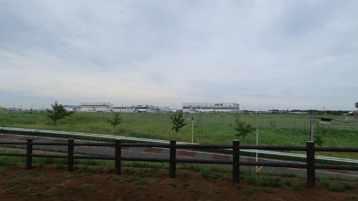 ひこうきの丘から見る成田滑走路