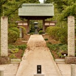 牡丹の寺観音寺