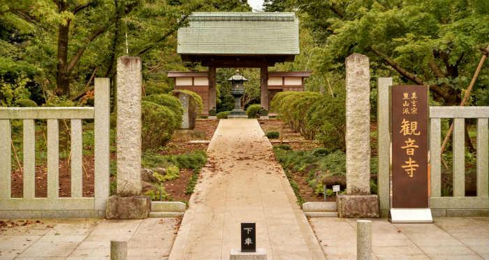 牡丹のお寺正面