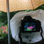 雨の中撮影の様子