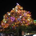中山競馬場クリスマスツリー