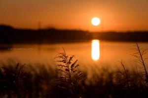 手賀沼の夕焼け