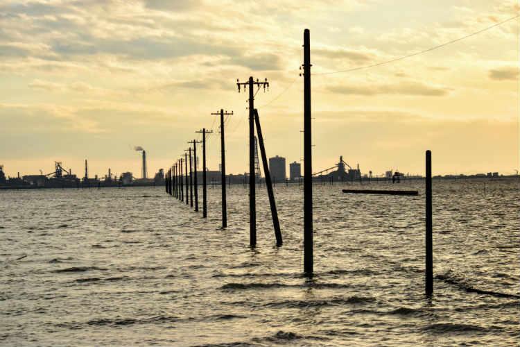 江川海岸の電柱があかるいとき