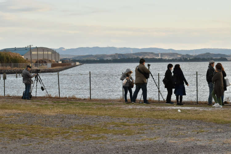 江川海岸の撮影場所