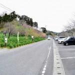 佐久間ダムと水仙と駐車場