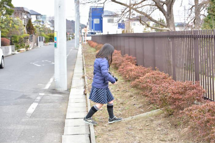 フェンスに近寄る娘