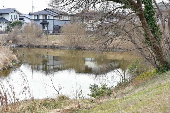 みやぞの野鳥の池の奥側