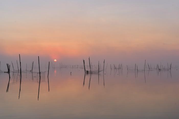 霧の印旛沼日の出