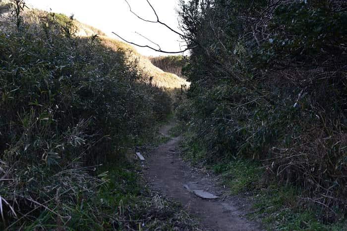 大波月とロウソク岩への道