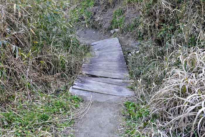 大波月海岸の手前には木の橋がある