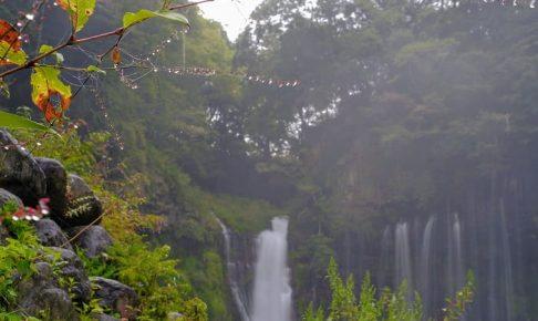 富士山が見えなかったので白糸の滝
