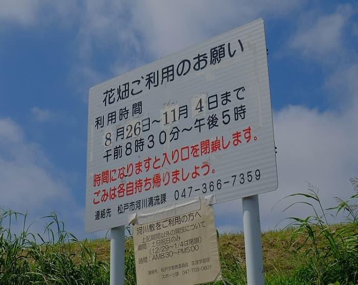 松戸江戸川河川敷入り口