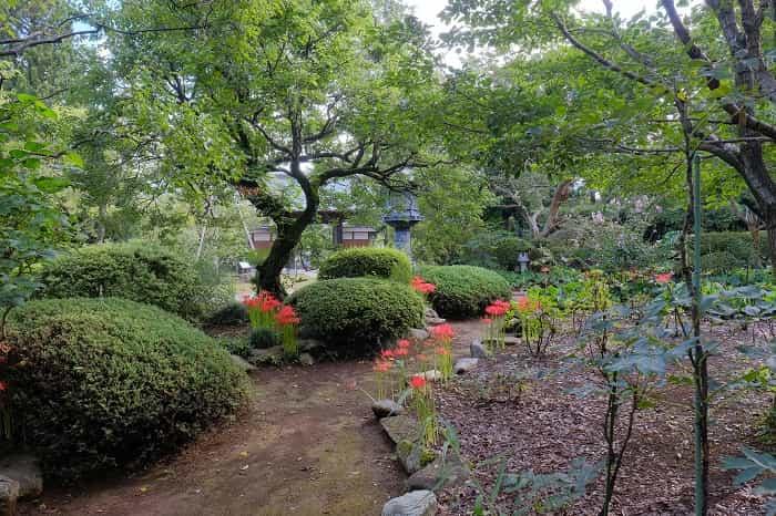 お寺の庭を散策