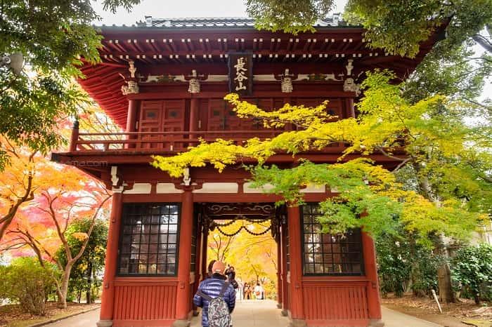 松戸市本土寺の紅葉