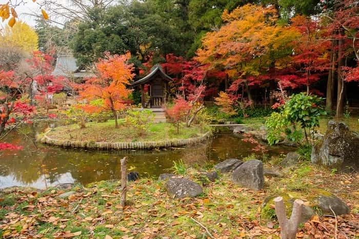 松戸市本土寺の池の紅葉