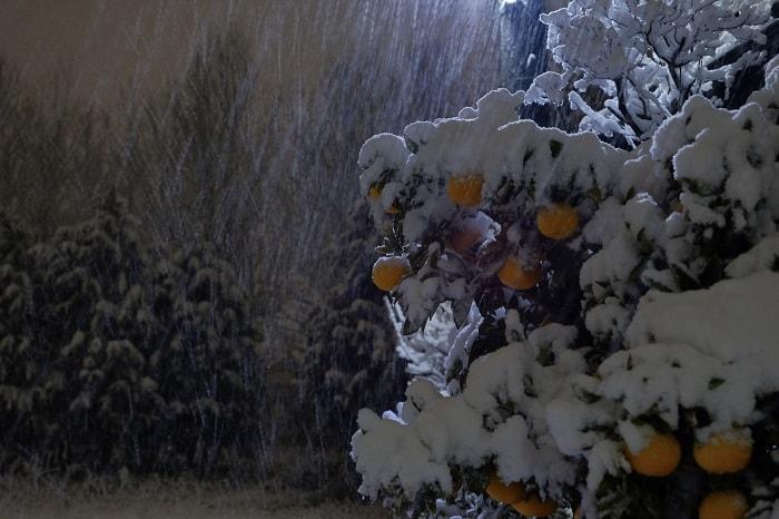雪が雨のようになる