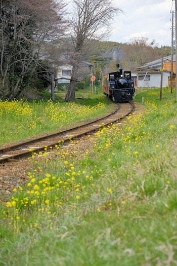小湊鉄道トロッコ