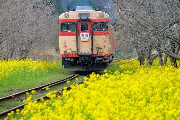 列車が行く