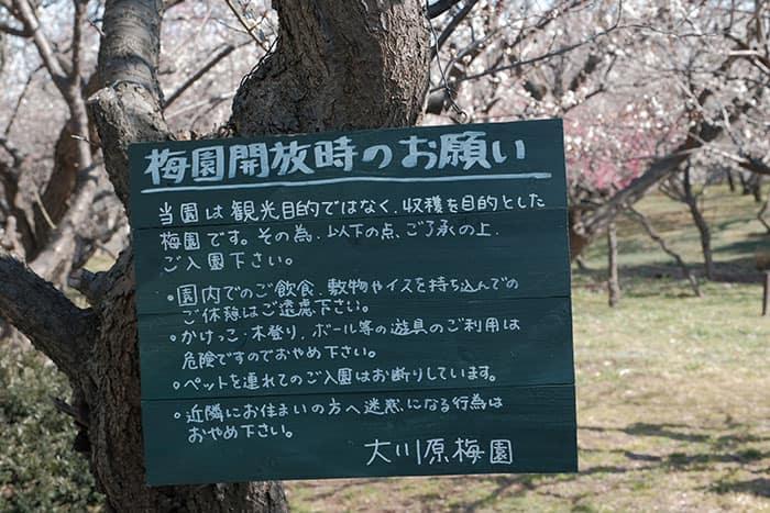 梅園の注意事項