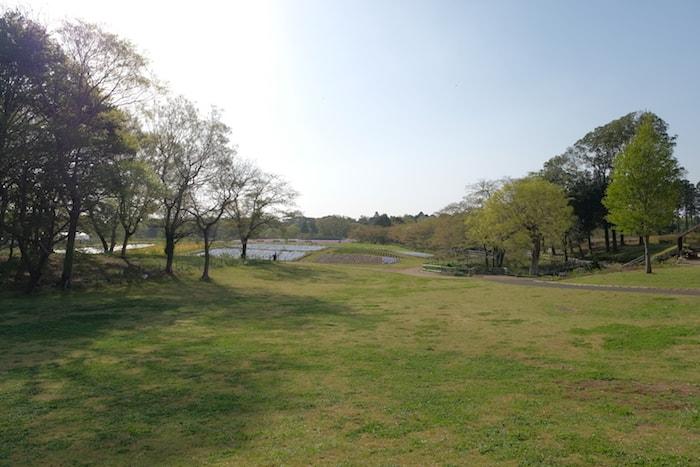 富田さとにわ耕園の駐車場からの眺め
