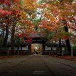 撮影スポット松戸市の東漸寺